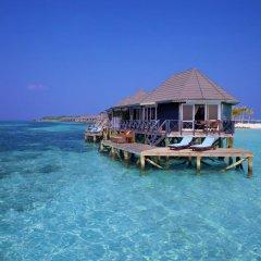 Отель Kuredu Island Resort 4* Вилла с различными типами кроватей фото 11