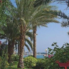 Rubi Hotel Турция, Аланья - отзывы, цены и фото номеров - забронировать отель Rubi Hotel онлайн фото 3