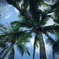 Отель Sanya Jinglilai Resort пляж фото 2