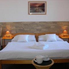 Отель Pension Paldus 3* Стандартный номер с различными типами кроватей фото 5