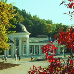 Отель Flora Чехия, Марианске-Лазне - отзывы, цены и фото номеров - забронировать отель Flora онлайн развлечения