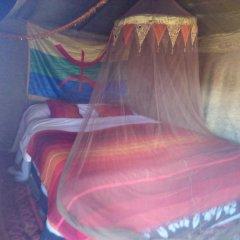 Отель Desert Camel Camp Марокко, Мерзуга - отзывы, цены и фото номеров - забронировать отель Desert Camel Camp онлайн комната для гостей фото 3