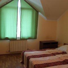Гостевой Дом Аэросвит Стандартный номер с двуспальной кроватью фото 3