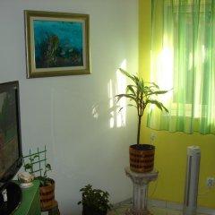 Апартаменты Apartment Franicevic удобства в номере