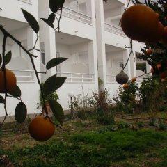 Отель Antouan Matina Студия фото 30