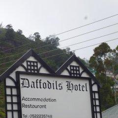 Daffodils Hotel балкон