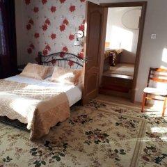 Гостевой дом Родник Люкс с различными типами кроватей фото 8