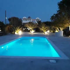 Отель Ecoxenia Studios Греция, Остров Санторини - отзывы, цены и фото номеров - забронировать отель Ecoxenia Studios онлайн бассейн фото 2