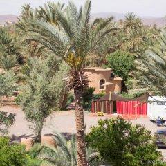 Отель Ecolodge - La Palmeraie Марокко, Уарзазат - отзывы, цены и фото номеров - забронировать отель Ecolodge - La Palmeraie онлайн фото 7