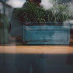 Отель Credible Нидерланды, Неймеген - отзывы, цены и фото номеров - забронировать отель Credible онлайн фото 3