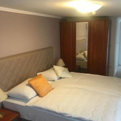 Hotel Vila Tina 3* Номер Делюкс с различными типами кроватей