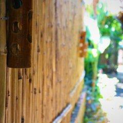 Отель Under the coconut tree Стандартный номер с различными типами кроватей фото 5