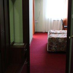 Мини-Отель Сенгилей удобства в номере