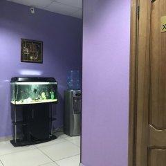 Мини-Отель Добрый Кот Иркутск детские мероприятия фото 2