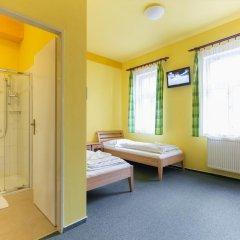 Отель Penzion U Salzmannu 3* Стандартный номер фото 2