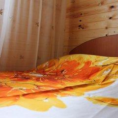 Mini-hotel Ekonomnaya Derevnia Стандартный номер разные типы кроватей