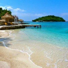 Dolphin Hostel пляж