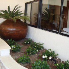 Hotel Veronica in Paphos, Cyprus from 46$, photos, reviews - zenhotels.com