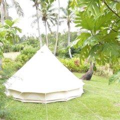 Waitui Basecamp - Hostel фото 9
