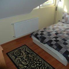 Отель Aranyalma Panzio&Etterem Heviz Стандартный номер с разными типами кроватей фото 3