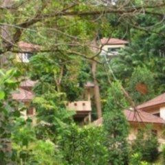 Отель The Delight Pine Tree Village