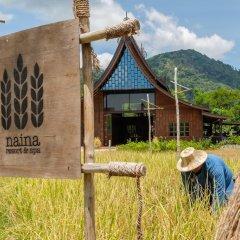 Отель Naina Resort & Spa Таиланд, Пхукет - 3 отзыва об отеле, цены и фото номеров - забронировать отель Naina Resort & Spa онлайн фото 2