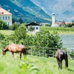 Garni Hotel Katzenthalerhof Лана с домашними животными
