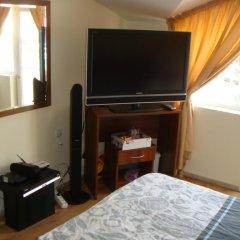 Апартаменты Apartment Petev in Alen Mak Генерал-Кантраджиево удобства в номере
