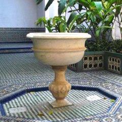 Отель Riad Al Wafaa Марокко, Марракеш - отзывы, цены и фото номеров - забронировать отель Riad Al Wafaa онлайн фото 10