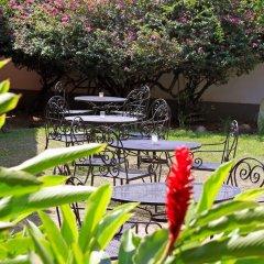 Отель La Casa De Cafe Копан-Руинас фото 8