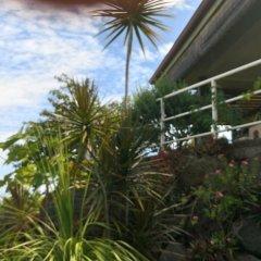 Отель Piafau hills Французская Полинезия, Фааа - отзывы, цены и фото номеров - забронировать отель Piafau hills онлайн фото 4