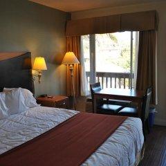 Отель Sunset Motel 2* Люкс с различными типами кроватей фото 8