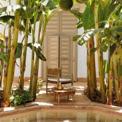 Отель Le Riad Berbere Марокко, Марракеш - отзывы, цены и фото номеров - забронировать отель Le Riad Berbere онлайн фото 15