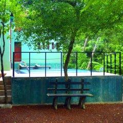 Отель Tropical Retreat детские мероприятия