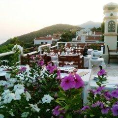 Отель Villa Diana