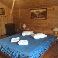 Гостиница Smerekova Khata Полулюкс разные типы кроватей фото 3