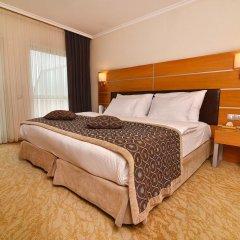 Ankara Plaza Hotel 4* Номер Делюкс двуспальная кровать