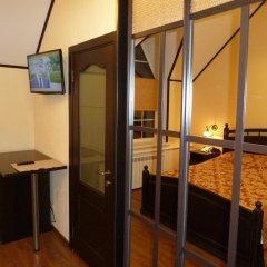 Гостиница Гостиный двор Алтай Номер Делюкс с различными типами кроватей фото 7