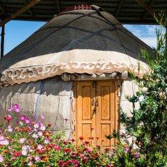 Отель Happy Nomads Yurt Camp Кыргызстан, Каракол - отзывы, цены и фото номеров - забронировать отель Happy Nomads Yurt Camp онлайн фото 22