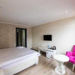 Aster Hotel Group 3* Стандартный номер с различными типами кроватей фото 2