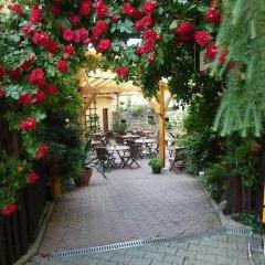 Отель Penzion Holiday фото 4