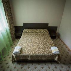 Гостиница Снежный барс Домбай 3* Студия Делюкс с различными типами кроватей фото 2