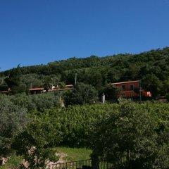 Отель B&B Contarine Италия, Региональный парк Colli Euganei - отзывы, цены и фото номеров - забронировать отель B&B Contarine онлайн балкон