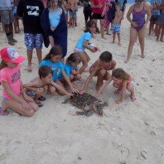 Отель Treasure Island Resort детские мероприятия