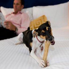 Отель Best Western Gustaf Fröding Hotel & Konferens Швеция, Карлстад - отзывы, цены и фото номеров - забронировать отель Best Western Gustaf Fröding Hotel & Konferens онлайн с домашними животными