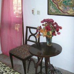 Отель Mayas Nest Индия, Нью-Дели - отзывы, цены и фото номеров - забронировать отель Mayas Nest онлайн фото 3