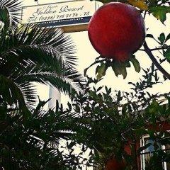 Отель Alacati Golden Resort Чешме фото 6