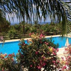 Отель Cala DellArena бассейн