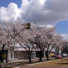 Отель Syoho En Япония, Дайсен - отзывы, цены и фото номеров - забронировать отель Syoho En онлайн фото 2
