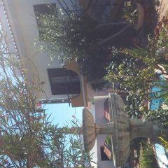 Отель Bela Alexandra Guest House
